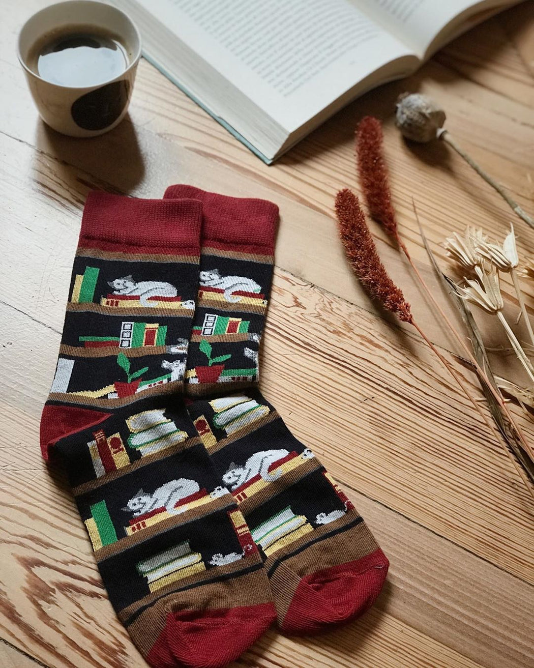 Books and Cats Socks