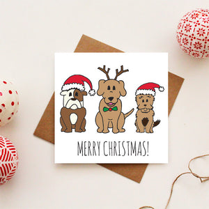 Dog Trio Christmas Card