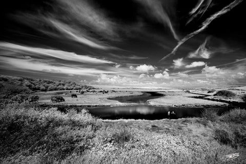 'Cuckmere Haven' Black and White Photographic Print