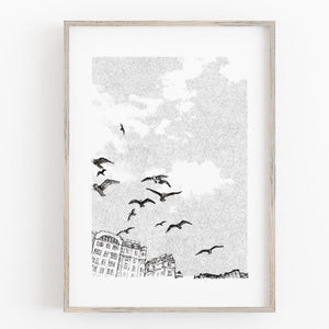 Brighton Birds, Fine Art Print