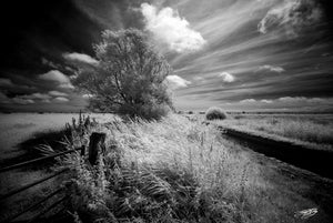 'Pevensey Levels' Black and White Photographic Print