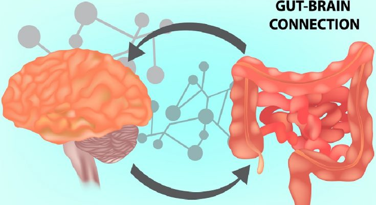 It's All Connected: The Gut-Brain Axis