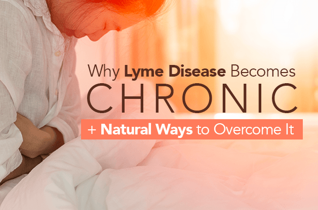 Why Lyme Disease Becomes Chronic + Natural Ways to Overcome It