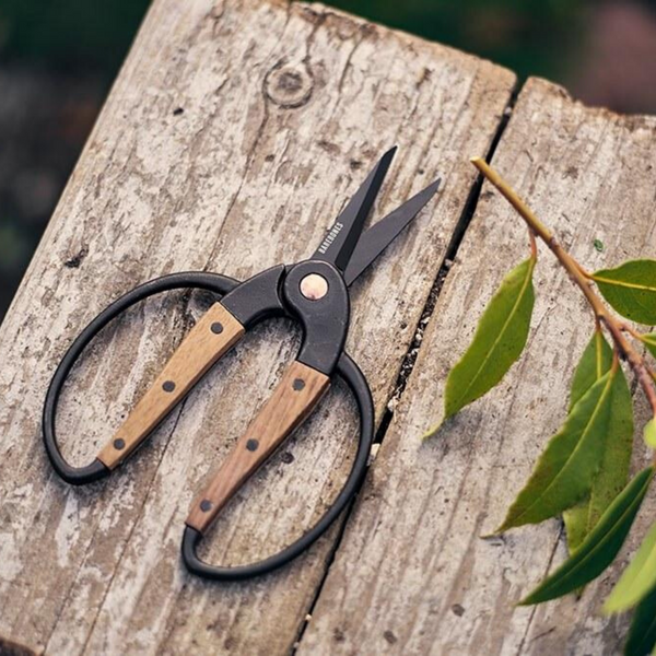 Barebones Living Small Scissors