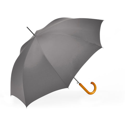 solid grey umbrella ~ Charlie