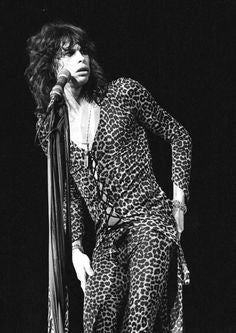 Bad Seed Inspiration - Steven Tyler