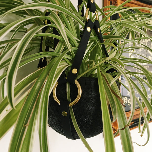 Kink Plant Hanger by Hellbent Leather
