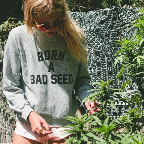 Born A Bad Seed Sweater Gray