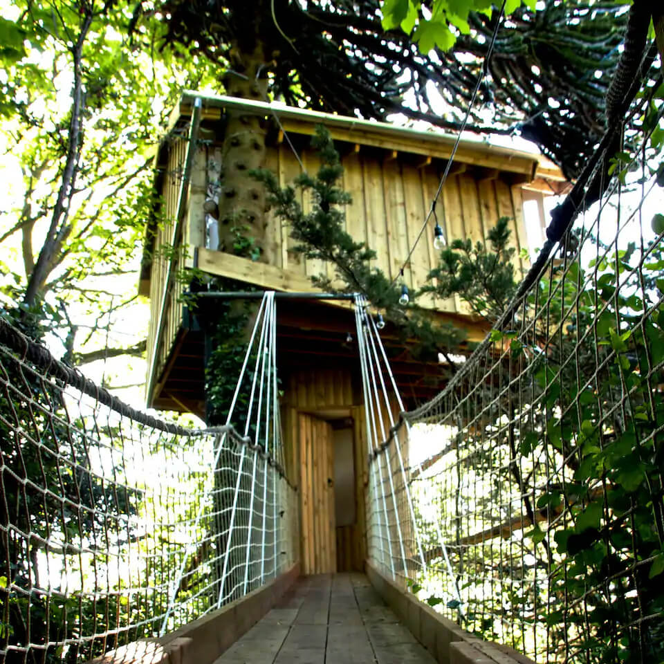Eco retreats - Sustainable holiday accommodation - View of walkway to treehouse