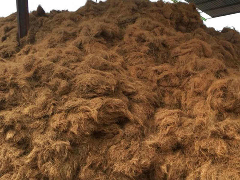 pile of coconut coir fibres