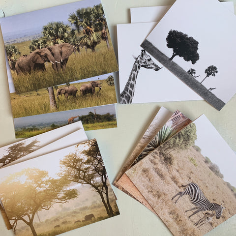 Notecards - various styles