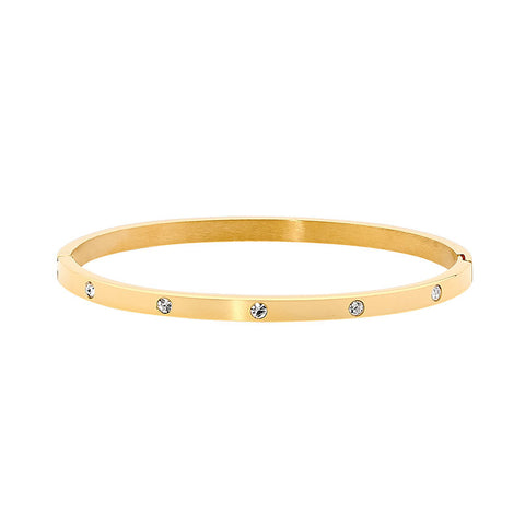 Ellani Stainless Steel Bangle SB180G