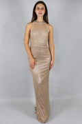 Zhaelle Sequin Netting Column Maxi Dress