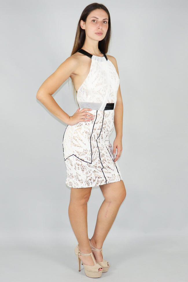 Riley Chill Lace Chiffon Backless Mini