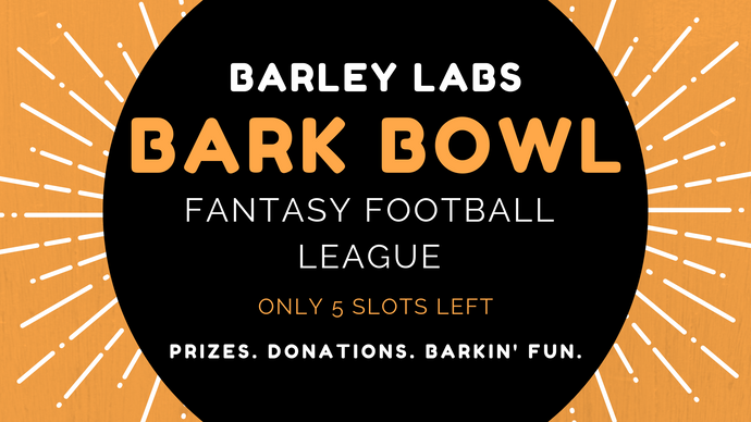 Join the Bark Bowl