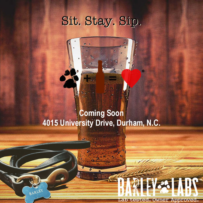 Coming Soon: Barley Labs, a Durham Dog Focused Bar