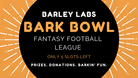 Barley Labs Bark Bowl Fantasy Football League