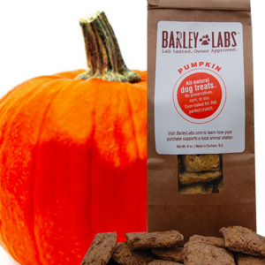 All-natural Pumpkin Treats - Now Wheat Free