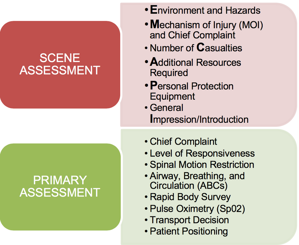 Scene and Primary Assessment