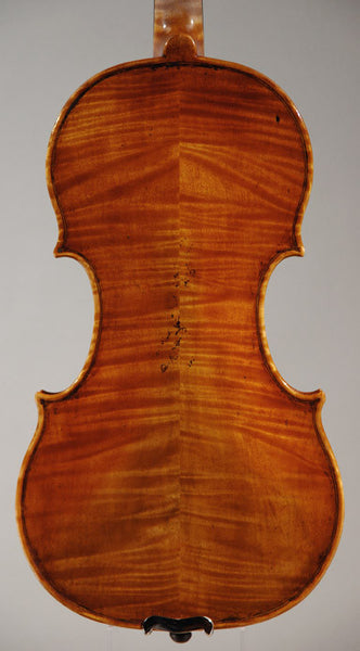 David Frederick violin back