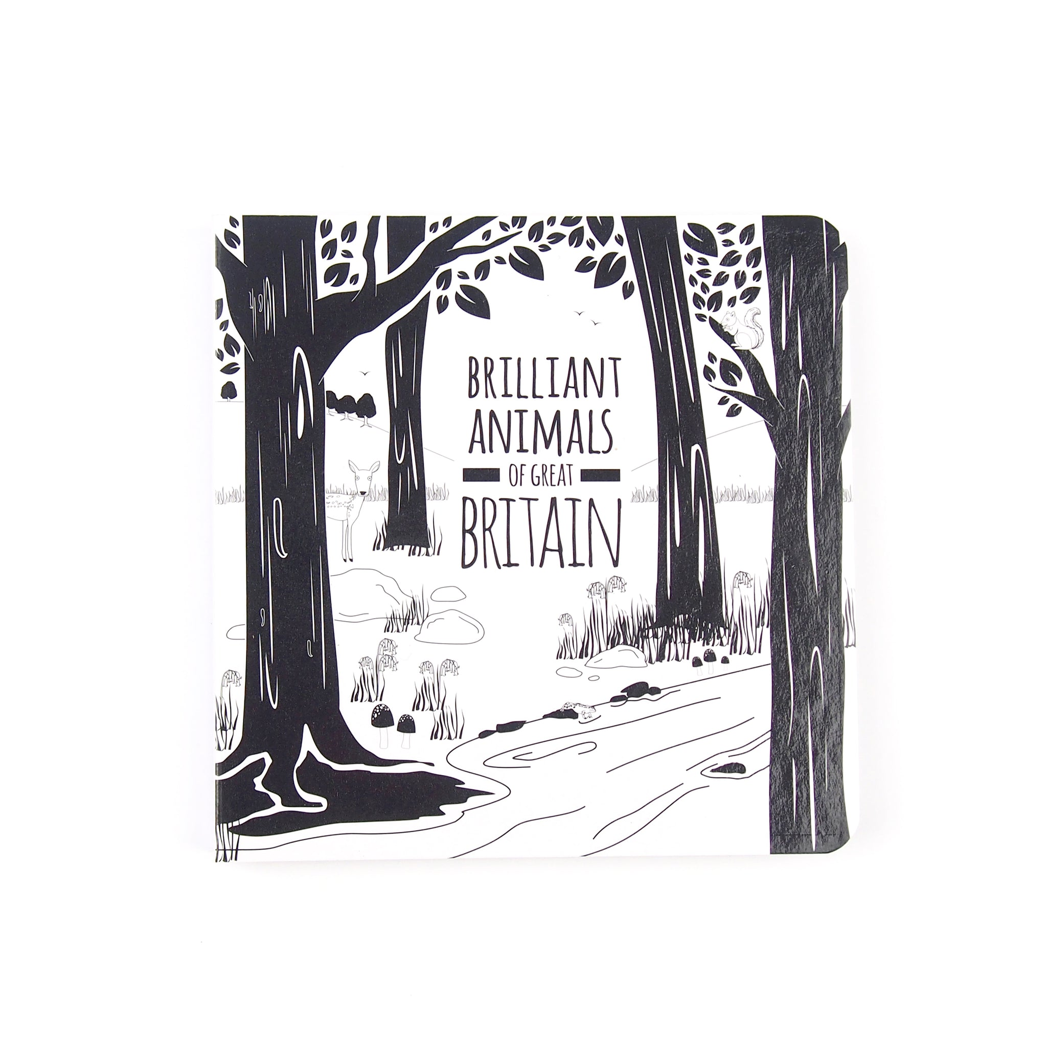 Baby Board Book - Brilliant Animals of Great Britain