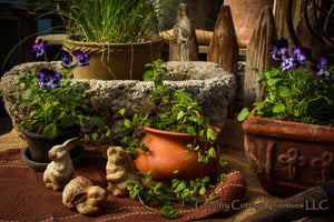Rustic Little Bunnies