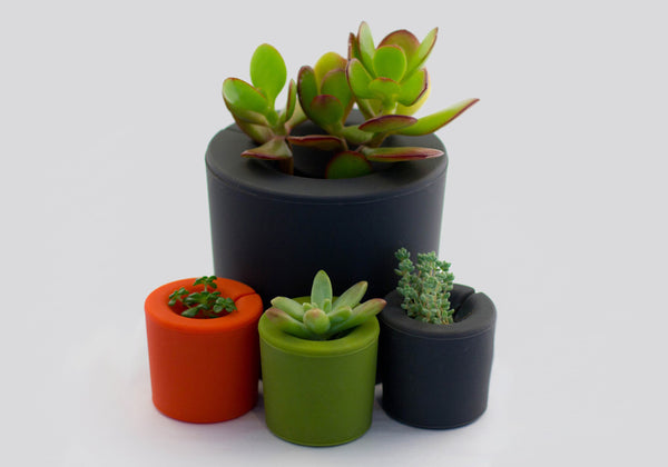 rootcup assortment