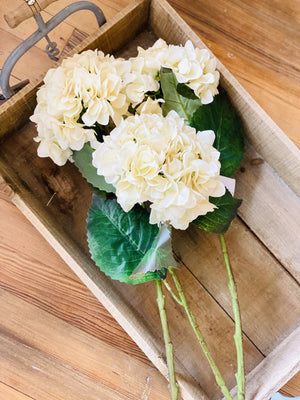 TALL HYDRANGEA STEM-CREAM - Infinity Raine