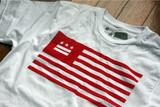 Washington DC USA Flag Shirt