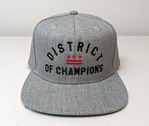 Washington DC District of Champions Flag Snap Back Hat