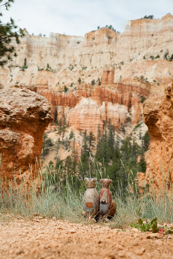 Owl and Bear in Bryce Canyon!