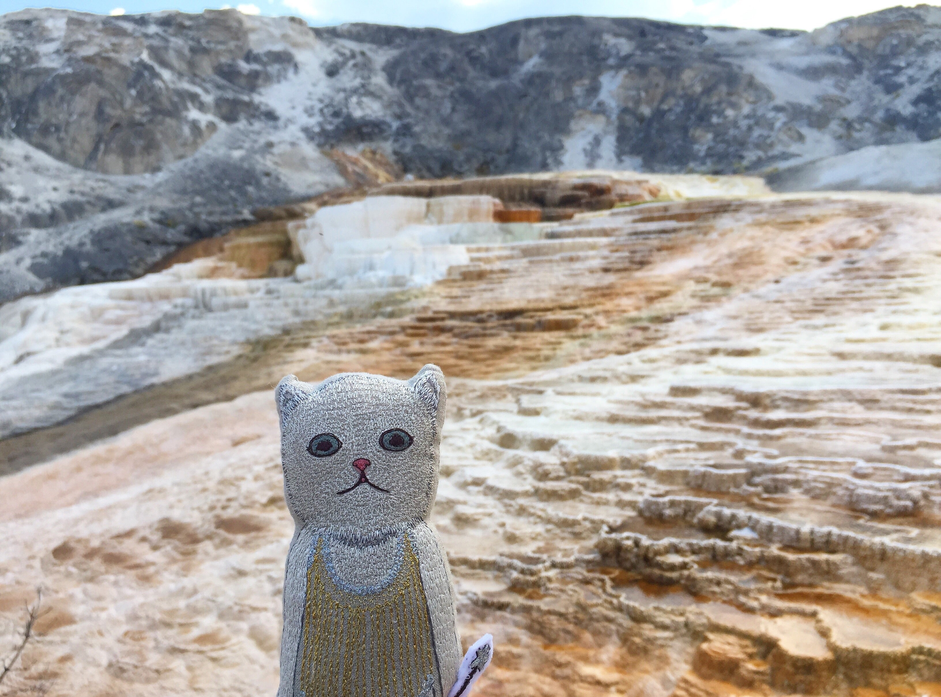 Coral & Tusk Baby Cat Pocket Doll at Mammoth Hot springs, Yellowstone National Park