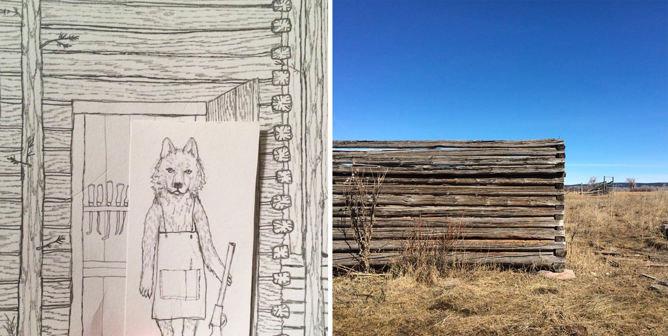 Stephanie Housley Wolf Drawing and inspiration - Coral & Tusk in Wyoming