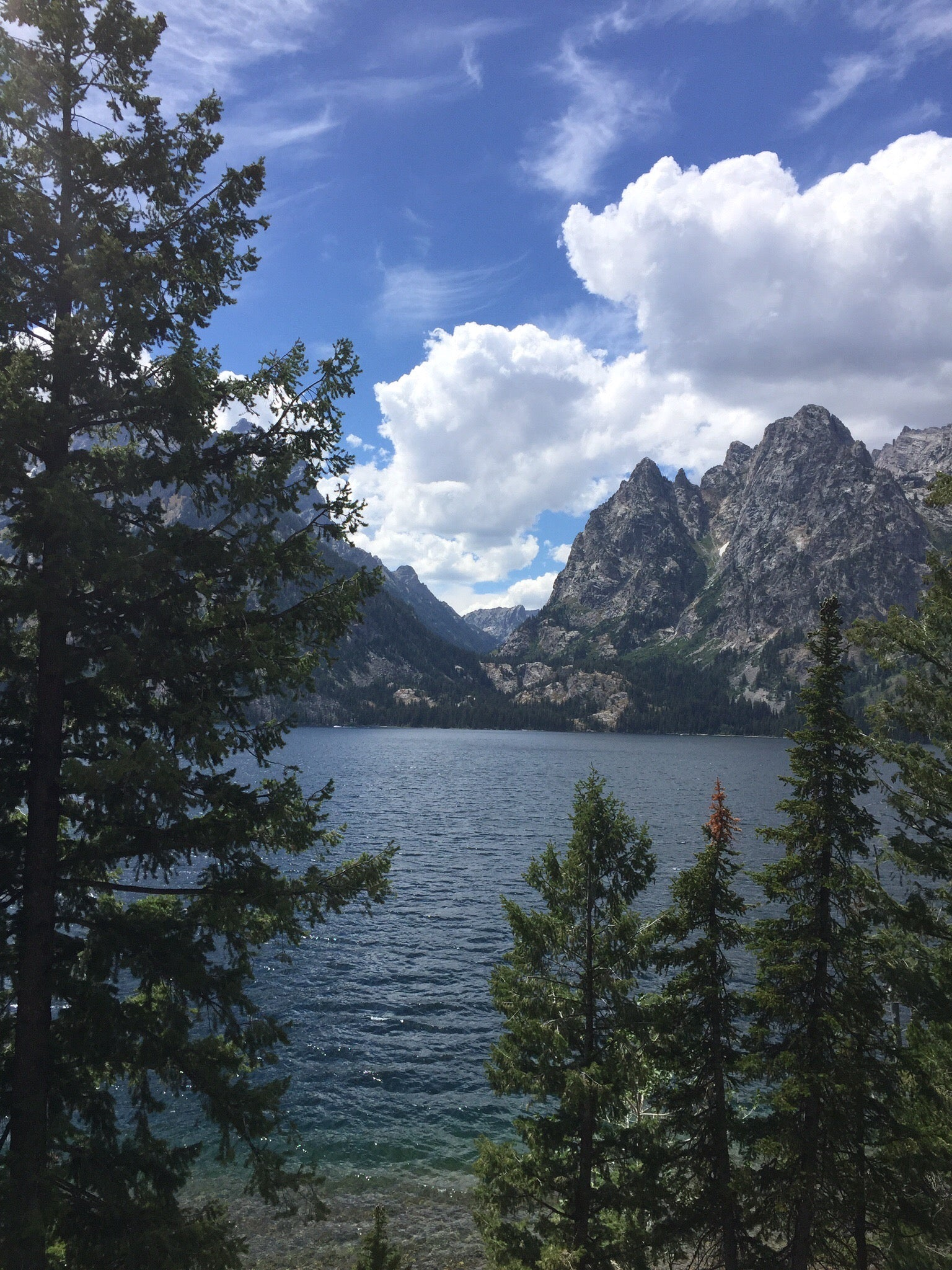 Coral & Tusk as Jenny Lake, Grand Tetons