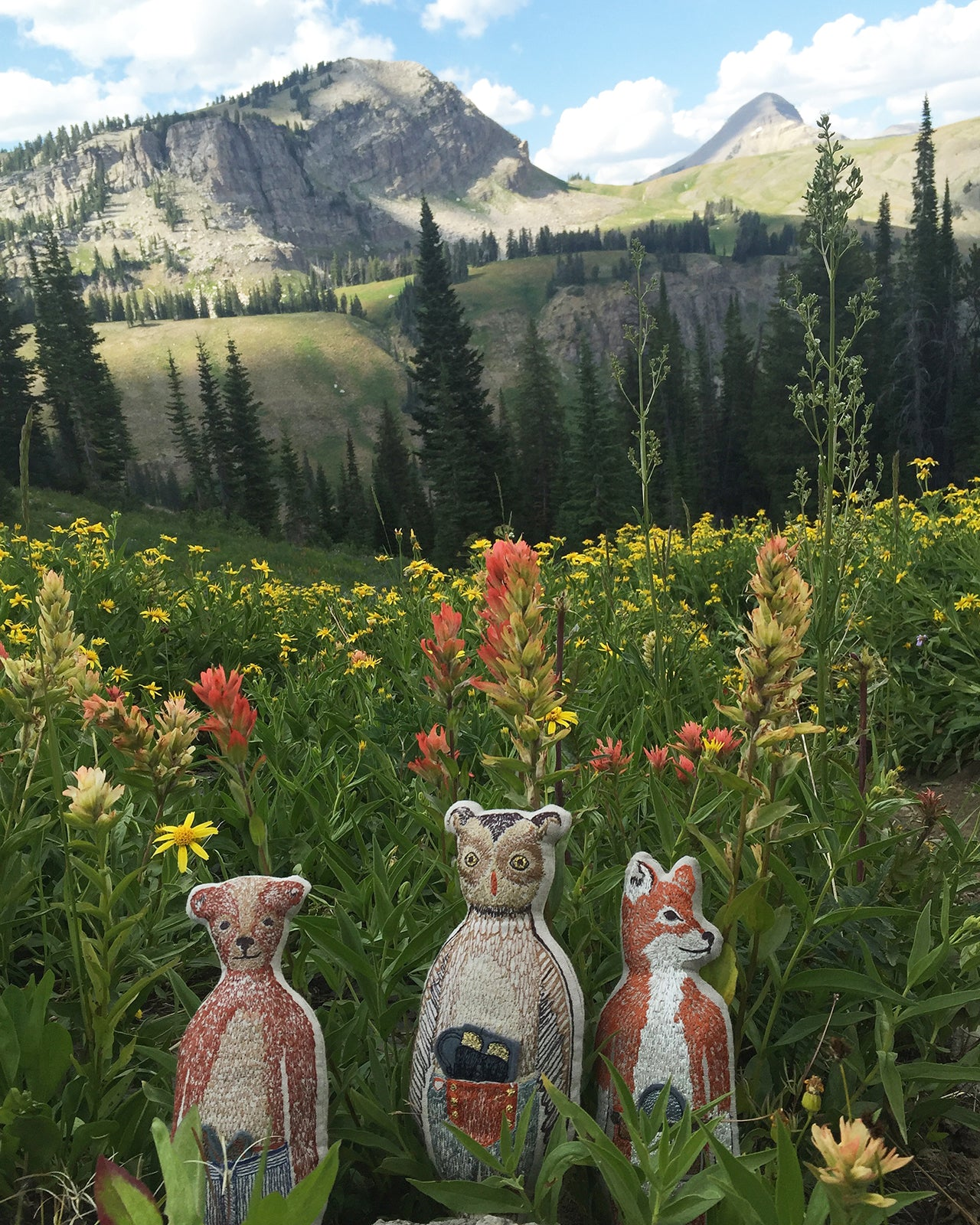Coral & Tusk Pocket Dolls at Grand Teton National Park - Marion Lake Trail