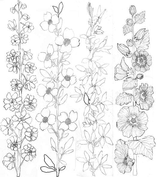 Stephanie Housley Coral and Tusk Flower Drawing