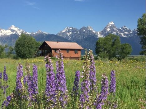McReynolds Black Tail Cabins Grand Teton Wyoming