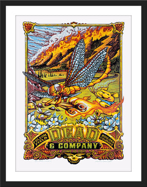 "AJ Masthay ""Dead & Co - Fire on the Mountain"""