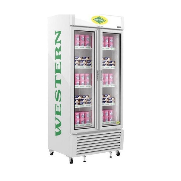 VERTICAL VISI FREEZER- DOUBLE DOOR