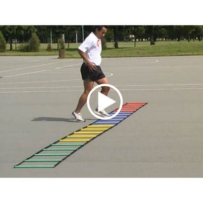 Multi-Coloured Ladder OnlineVideo