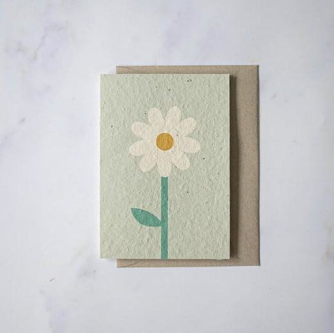 Plantable Cards - Daisy