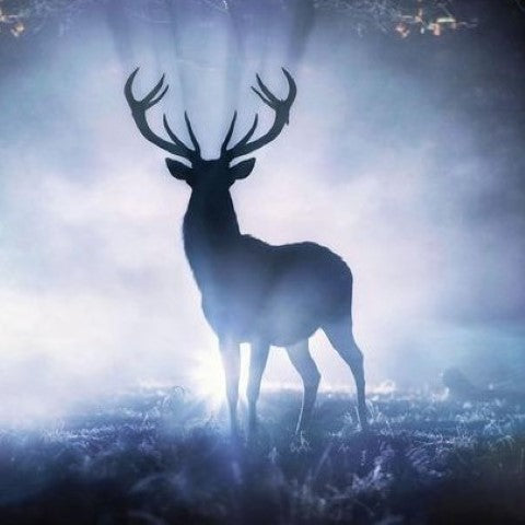 Stag Art by Max Ellis