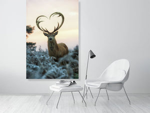 The Stag with heart shaped antlers 1 by Max Ellis