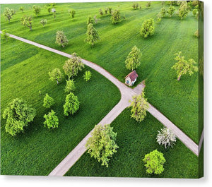 Trees On Green Spring Meadow Aerial View - Canvas Print