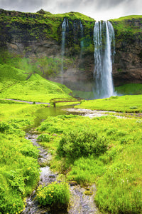 Waterfall Seljalandsfoss Iceland in bright green landscape