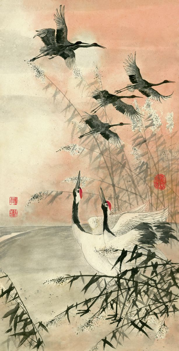 Cranes 25 Chinese Brush Painting by River Han