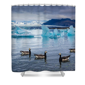 Barnacle Geese In Glacier Lagoon In Iceland - Shower Curtain