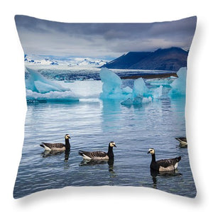Barnacle Geese In Glacier Lagoon In Iceland - Throw Pillow