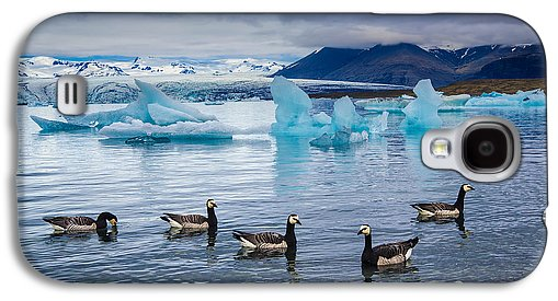 Barnacle Geese In Glacier Lagoon In Iceland - Phone Case