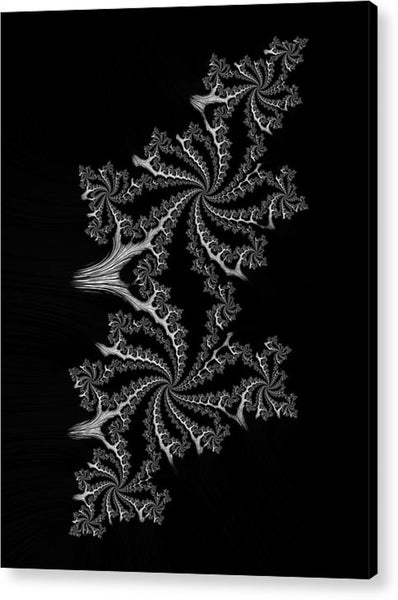 Black And White Fractal Spirals - Acrylic Print